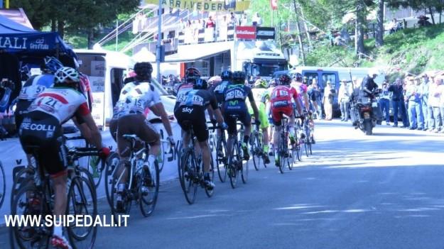Giro d'Italia 2013 sul Montasio