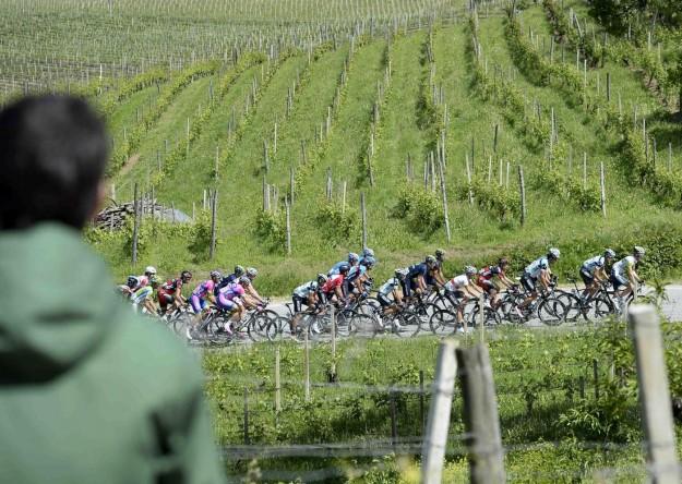 Giro d'Italia 2013, arrivo a Cherasco - 60