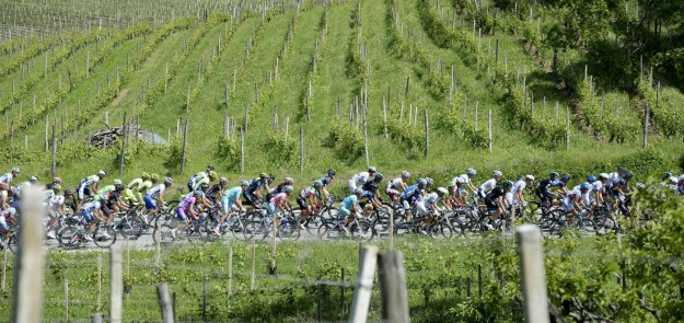 Giro d'Italia 2013, arrivo a Cherasco - 61