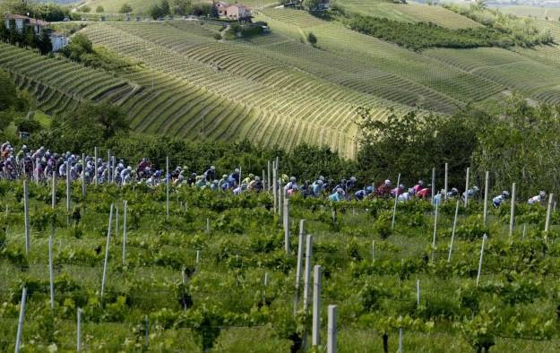 Giro d'Italia 2013, arrivo a Cherasco - 65
