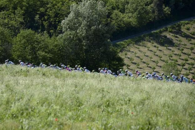 Giro d'Italia 2013, arrivo a Cherasco - 69