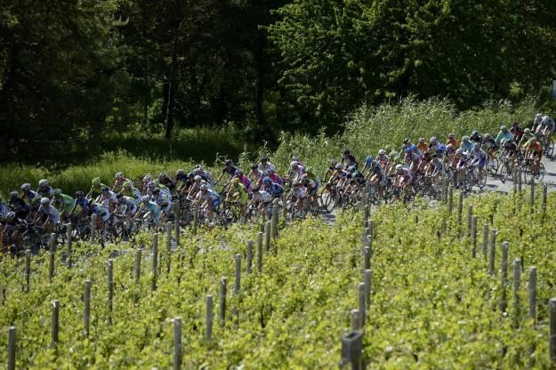 Giro d'Italia 2013, arrivo a Cherasco - 73