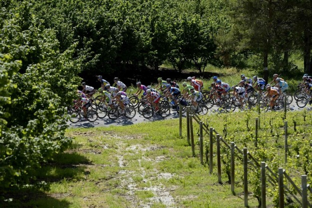 Giro d'Italia 2013, arrivo a Cherasco - 74