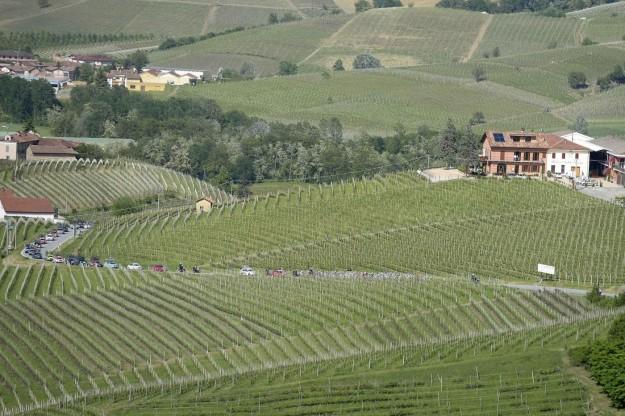 Giro d'Italia 2013, arrivo a Cherasco - 77